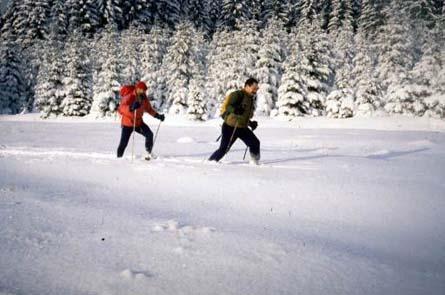 http://krant.telegraaf.nl/krant/enverder/venster/reizen/fotos/reis.990306ardennen.sneeuw.jpg
