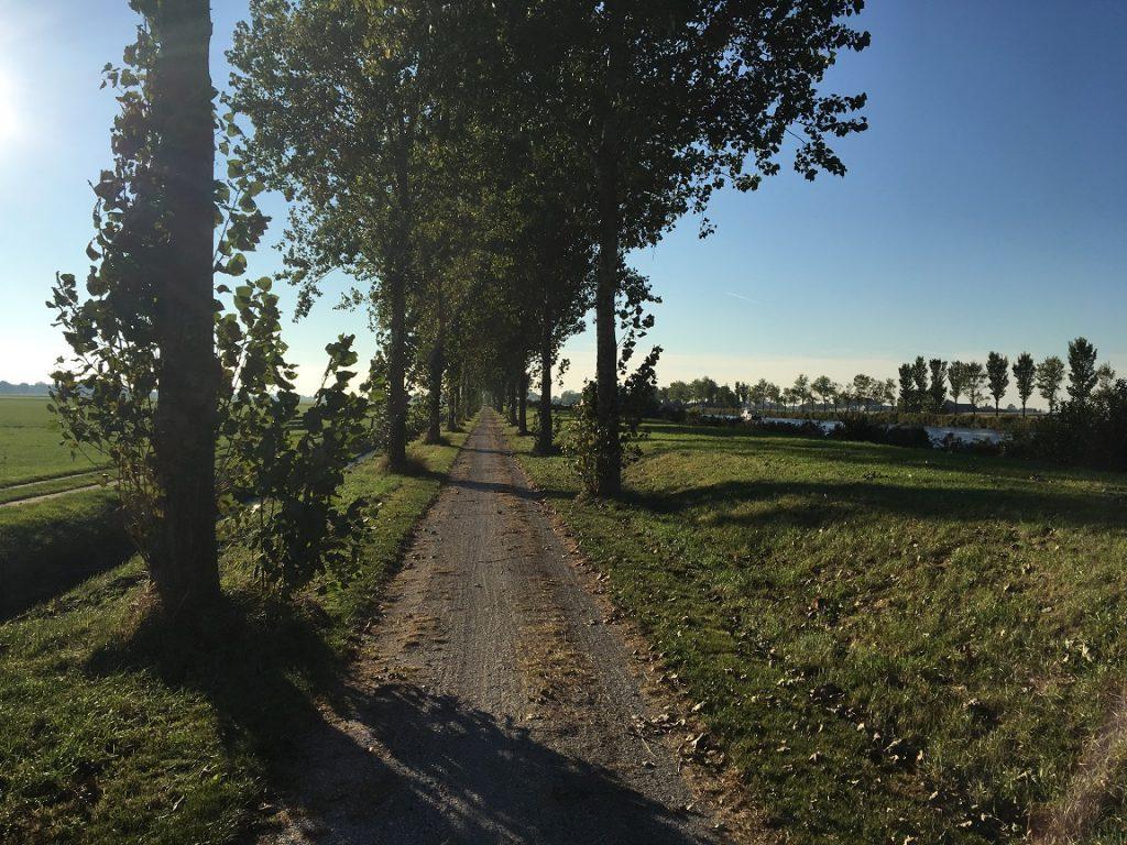 http://www.rimave.nl/wp-content/uploads/2016/10/IMG_0261-1024x768.jpg