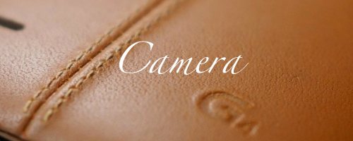 http://1.bp.blogspot.com/-M1ZUmrbUEzo/VWng7nS2HMI/AAAAAAAAPA0/nyrHTm-W6js/s1600/13A.%2BCamera.jpg