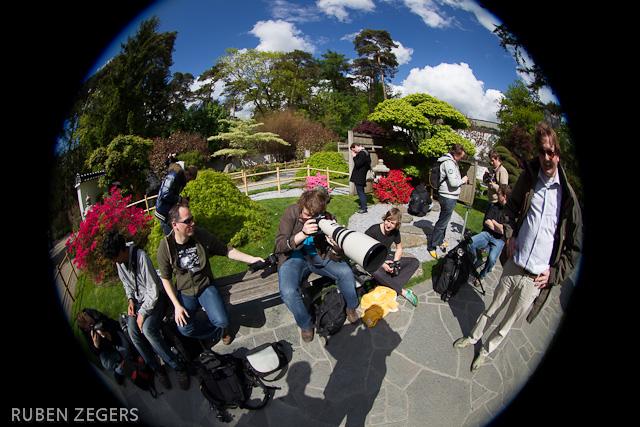 http://www.fotozegers.nl/got/amers/JE7F6315.jpg