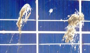 http://www.polderpv.nl/Assets/images/2006_03250005.jpg