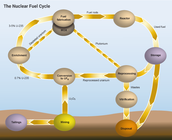 http://www.world-nuclear.org/getmedia/2be2b5a9-13aa-4eb3-a16d-16ddcf7509a0/nuclear-fuel-cycle.png.aspx