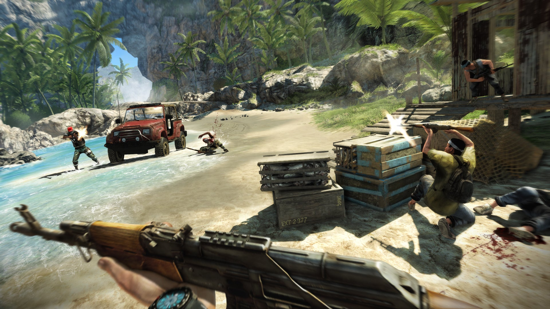 http://pcmedia.ign.com/pc/image/article/121/1218710/far-cry-3-20120214035808822.jpg